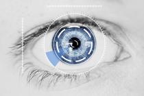 Eye-Tracking von Stellenanzeigen