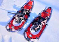 Schneeschuhwandern LZS Sonderthema 097